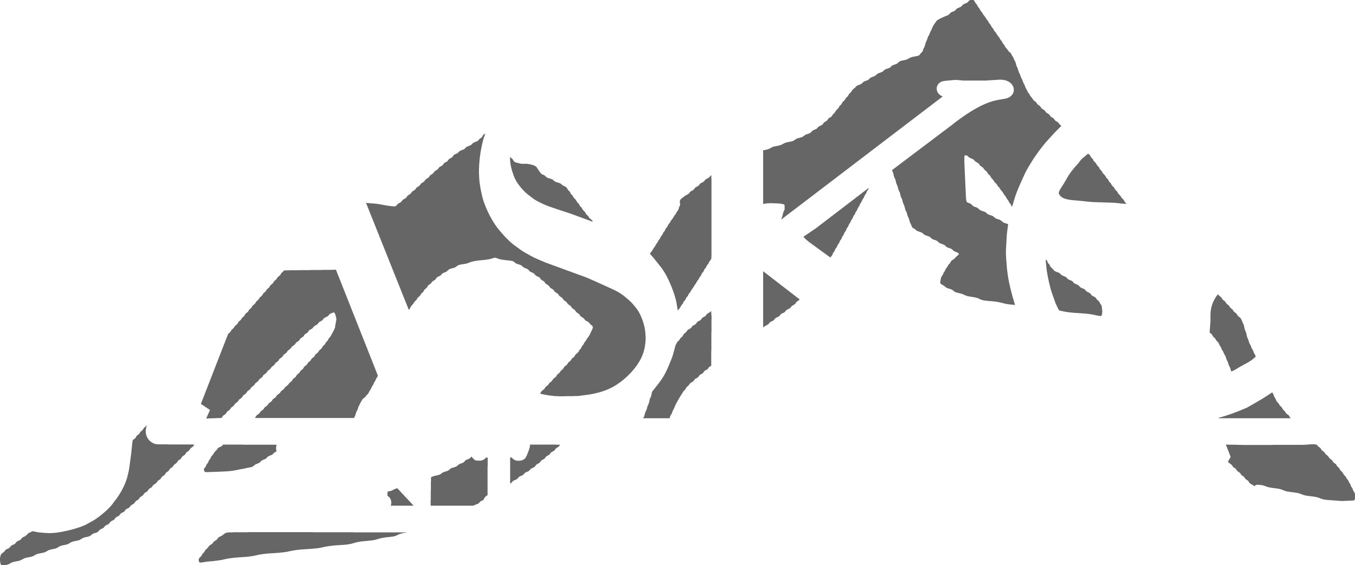 Jasko Enterprises Inc.